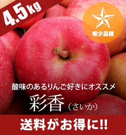 【9月下旬〜:希少品種】青森りんご 彩香(さいか)4.5kg(14〜20個)