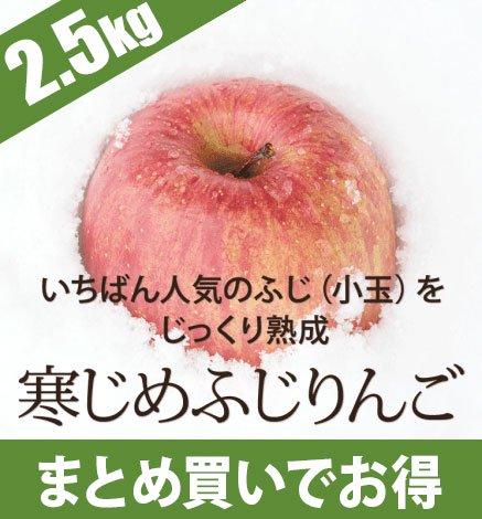 青森りんご 寒じめふじりんご 2.5kg(9〜14玉)