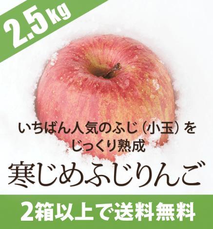 青森りんご 寒じめふじりんご 2.5kg(10〜14玉)