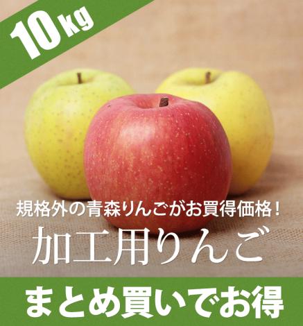 【訳あり商品】青森りんご ジュース用りんご 10kg