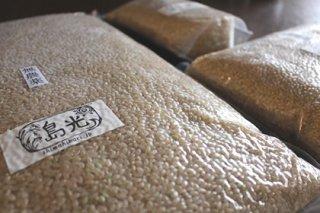 無農薬・無化学肥料・天日干し玄米 1kg コシヒカリ
