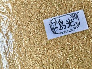 無農薬・無化学肥料 玄米 1kg ササニシキ【教室の会員様】