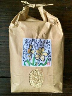 モチ米(玄米)100g