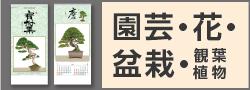 園芸・花・盆栽・観葉植物