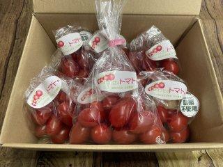 《小分け1kg》しあわせのトマト(アイコ)