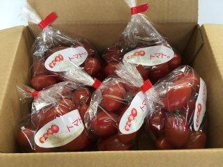 《小分け3kg》しあわせのトマト(アイコ)