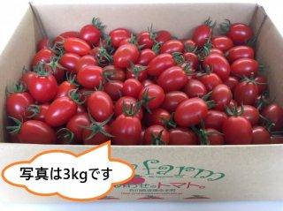 【のし付】《3kg》おいしくて止まらない!しあわせのトマト(アイコ)