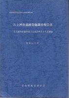 石上神社遺跡発掘調査報告書