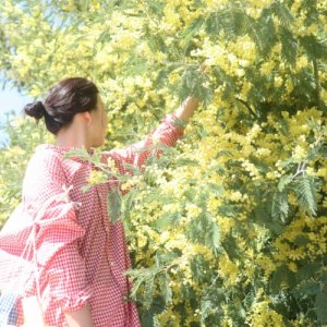 SMOCK FROCK plus