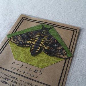 コーナーしおり(クロメンガタスズメ/...