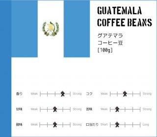 グアテマラ コーヒー豆[100g]