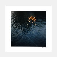 Alicia Bock Photography / Water Photograph #1 406×406mm