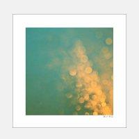 Alicia Bock Photography / Rainstorm 406×406mm