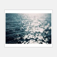 Alicia Bock Photography / Sea Spark 330×254mm