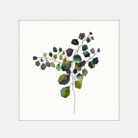 Sarah Martinez / Little Leaves W305×H305mm