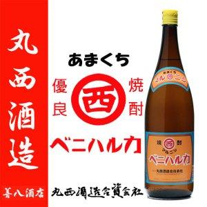 限定販売 マルニシベニハルカ   25度 1800ml 丸西酒造 黒麹 本格芋焼酎