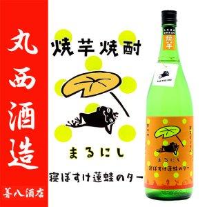 寝ぼすけ蓮蛙のター 25度 1800ml 丸西酒造 焼芋焼酎