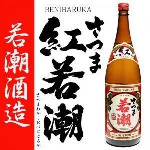 季節限定蔵出し さつま若潮 紅はるか 25度 1800ml 若潮酒造 白麹仕込み 本格芋焼酎